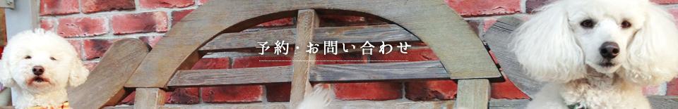 予約/お問い合わせ